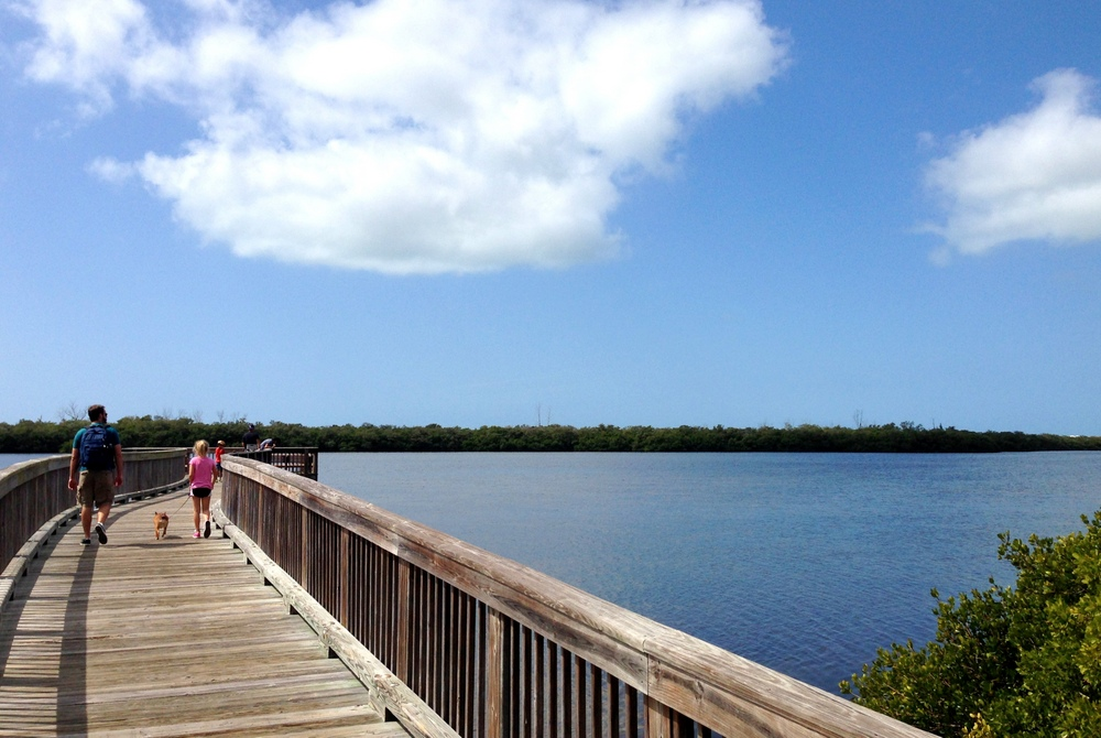 View of the open water from the boardwalk